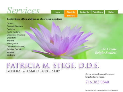stege_dds_services